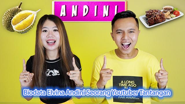 Biodata Elvina Andini Seorang Youtuber Tantangan