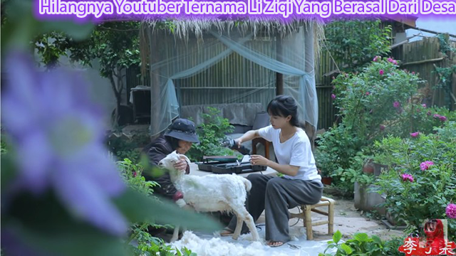 Hilangnya Youtuber Ternama Li Ziqi Yang Berasal Dari Desa